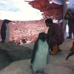 Musée de l'Antarctique: exploration