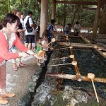 Purification par l'eau tout un rituel ...