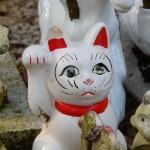 Pour Marie-Claude, message sur les chats ...