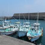 Port de pêche, ils son nombreux