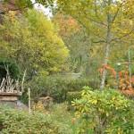 garden art en automne