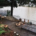 au bord du Loiret