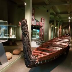 Pirogue Maori Otago museum