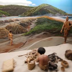 Scène de vie de Maori, Musée Otago