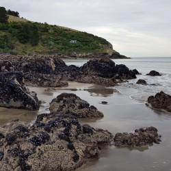 De retour sur la Plage, rochers couverts de moules