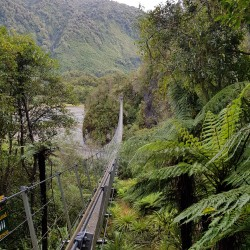 Plusieurs ponts suspendus sur le Robert Track (chemin)