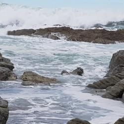 Côté Pacifiqu
