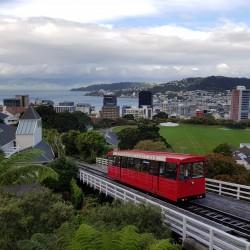 Cable train qui assure la liaison de  la ville au Jardin Botanique