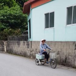Madame 90 ans va travailler son lopin de riz, île de Tokashiki archipel Okinawa