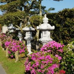 Nombreuses statues et des fleurs...