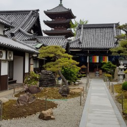 Shidoji Temple 86