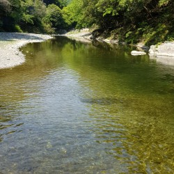 Rivière en contre bas chez Taro et Hiroko