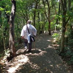 Marche après la visite de Kongofukiji 38