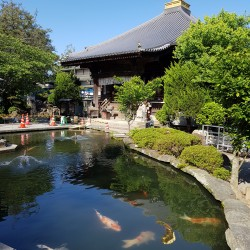 Temple 1 Ryozenji