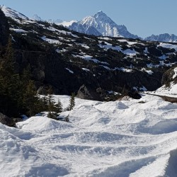 On est au col White pass Yukon