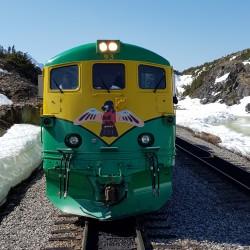 Locomotive à Arthur Pass