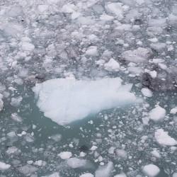 Glace tombée du glacier