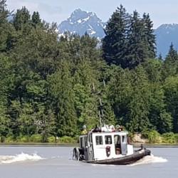 remorqueur remontant la Fraser River