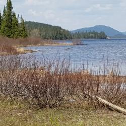lac en traversant le Parc Nord de Québec