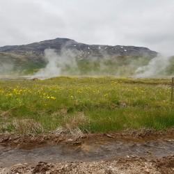 fumerolles à Geysir